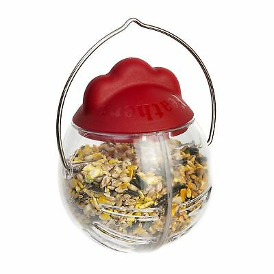 Spikes World Feathers & Beaky Peck It Chicken Treat Dispenser (Assorted Colours)