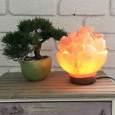 Himalayan Salt Lamp Ionizing Air Purifier Rock Fire Bowl Natural On/Off Switch
