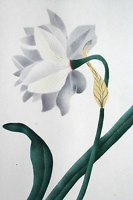 Superb Antique Theorem Painting On Paper Hand Painted Flower Leaves