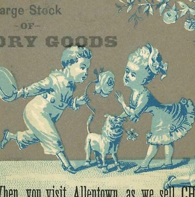 Lovers Boy In Glasses Reading Book Kramer & Co Allentown PA Victorian Trade Card