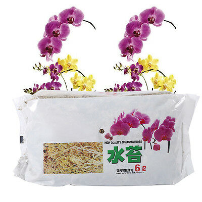 New 6L/12L Sphagnum Moss Moisturizing Organic Fertilizer For Phalaenopsis Orchid