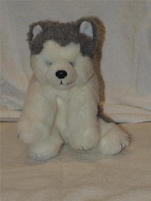 "Ty Husky Puppy Dog Dakota 10""  Retired Gray White Malamute Beanie Buddy Classic"