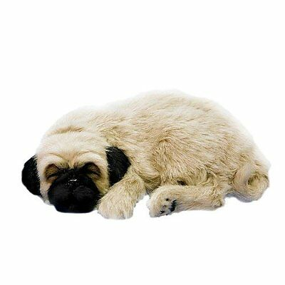 Huggable Pug Puppy For Friend Senior College Kids Comes with Bed Pet Collar