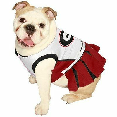 NCAA Wyoming Cowboys Cheerleader Dog Dress X-Small