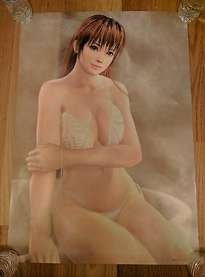Dead or Alive DOA Xtreme 3 Kasumi B2 Bath Poster NO CREASES FREE SHIPPING