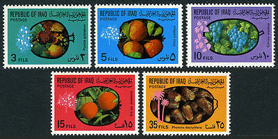Iraq 1970 Fruits MNH