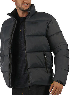 Regatta Geodesy Padded Mens Jacket - Black