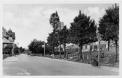 Postcard  Sussex     Sidley   Green      Rp