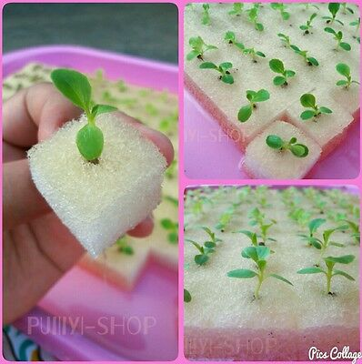 """192 x1""""Cube Sponge For Hydroponic Aeroponic  Plant Seed Starting"""