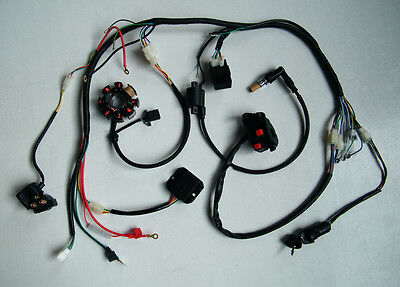 Complete Electric Wire Harness Two Hole Magneto Coil, CDI ETC for 250CC ATV QUAD