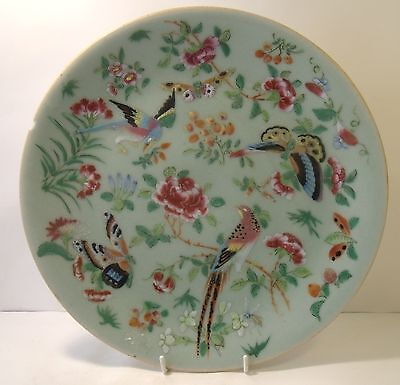 """19th Century Chinese Celadon Famille Rose 10"""" Plate"""