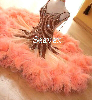 Feather Smooth Ballroom Waltz Tango Standard Dance Dress US 8 UK 10 Two Color