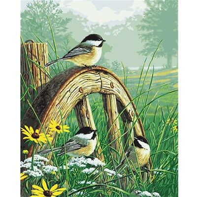 New Paint by Number Kit 40x50CM (16 x 20 inch) Meadows Edge Lawn Wheel And Birds