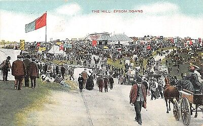 POSTCARD  SPORT  HORSE  RACING    EPSOM  DOWNS   The  Hill