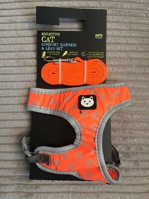 Cat Harness And Lead Set
