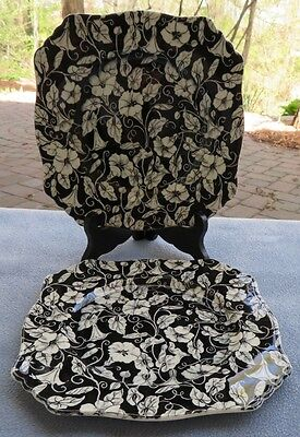 TWO Royal Winton Morning Glory Black & White Floral Chintz Square Lunch Plates