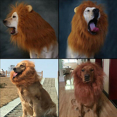 Costume pour animaux de compagnie Lion Mane Wig Dog Clothing Dress UP