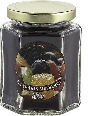 Home Interior Celebrating Mandrian Mulberry $5 each candle SPECIAL see pictures