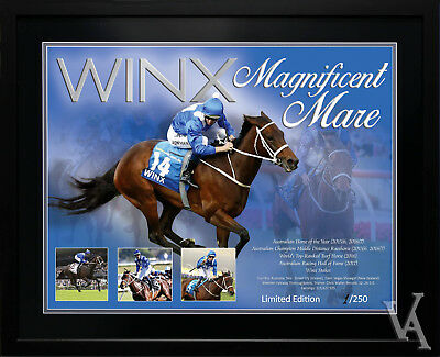Winx Horse Racing Memorabilia Limited Edition Framed Poster Photo