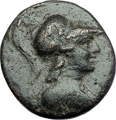 APAMEIA PHRYGIA 88BC Athena Gemini Caps Eagle Original Ancient Greek Coin i61135