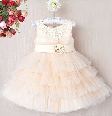 Baby Girls Dress Wedding Birthday Flower Girl Princess Pageant dress STUNNING