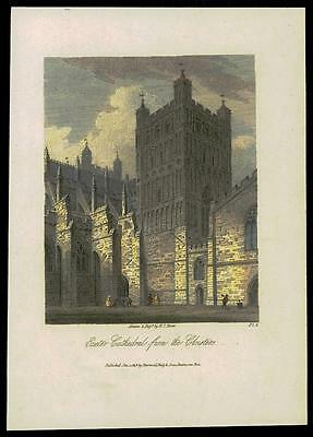 1819 DEVON - Antique Engraving EXETER CATHEDRAL FROM THE CLOISTERS (19)