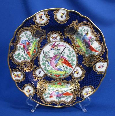 Hand-Painted Samson Birds & Insects Cabinet Plate
