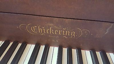 Antique Chickering Grand Piano, circa 1915