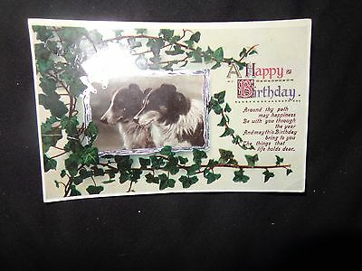 VINTAGE RP POSTCARD ,C1914 BIRTHDAY, with collie dogs 1/T