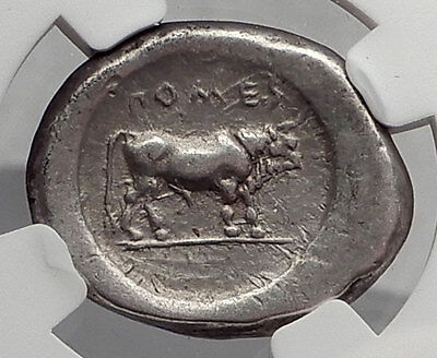 POSEIDONIA Paestum LUCANIA 470BC Ancient Silver Stater Greek Coin NGC cVF i61200