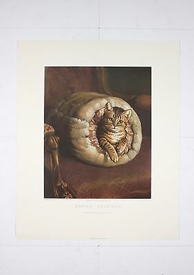 Winter Quarters Kitten Cat Playing by Frank Paton - HIGH END WALL ART