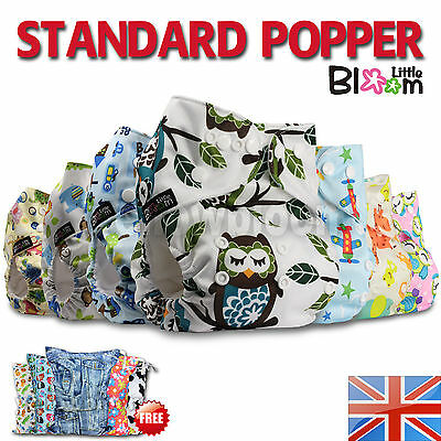 LittleBloom Baby Cloth Washable Reusable Nappy Pocket Diaper with Insert