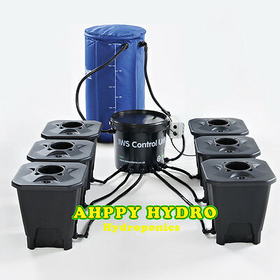 IWS DWC 6 POT Complete System With Tank Hydroponics Deep Water Culture
