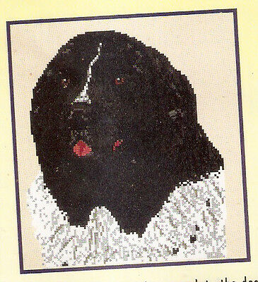 Newfoundland Landseer Counted Cross Stitch Complete Kit LAST ONE!