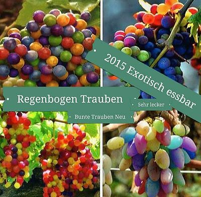 15x Rainbow Grapes Colourful Seeds Plant Rare Fruit New #140
