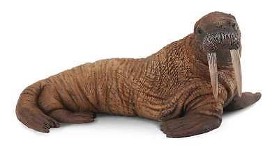 CollectA Sea Life Walrus Toy Figure - Authentic Hand Painted Model