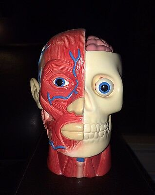 MUNKTIKI Red Psychedelic Anatomical Head Tiki Mug 2014 Limited Edition #100 RARE