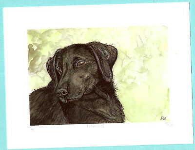 Flat Coated Retriever Limited Ed Art Print UK Artist Elle Wilson Forevermore
