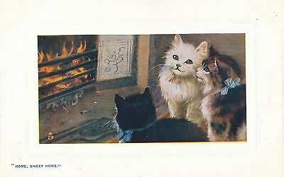 POSTCARD   CATS    Home  Sweet  Home           Tuck