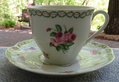 Haviland Limoges French Garden Cup and Saucer Set France