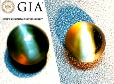 Investment! GIA Certified 5.63 ct Natural #ALEXANDRITE!  CATS EYE, Watch video