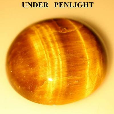 11.6cts Genuine! UNHEATED ORCHE UMBER INDIA TIGER'S EYE Oval CABOCHON