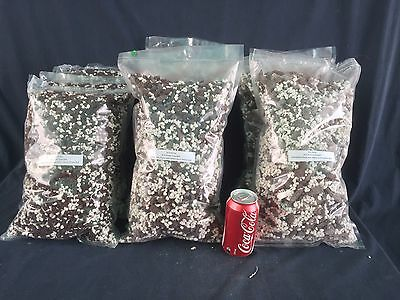 RON. Orchid media, Potting media mix - 5L of Bark / Perlite media for orchids.