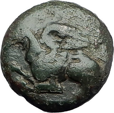 ABDERA in Thrace 410BC Authentic Ancient Greek Coin GRIFFIN & YOUNG MALE i61400