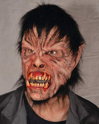 Mask Head - for Cosplay Halloween Dress Up Scary Party Costume - Man Wolf