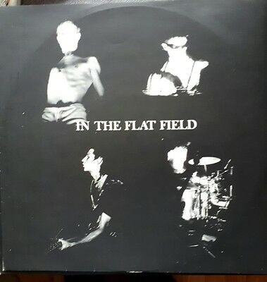 lp record by Bauhaus, In the flat field
