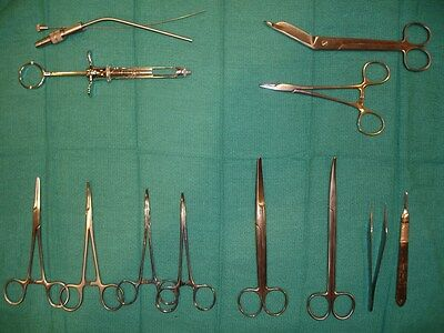 Surgical Instrument Set,basic Disection, Stainless, Germany, Great Starter Set!