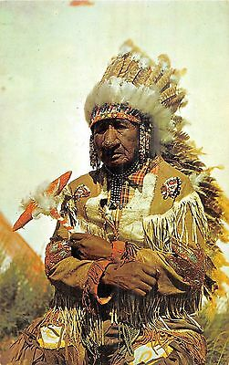 POSTCARD   ETHNIC   RED  INDIAN     Old  Indian  Chief