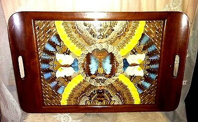 Vintage Butterfly Wing Art Inlaid Wood Serving Tray~ Glass Cover ~ Mid Century ~