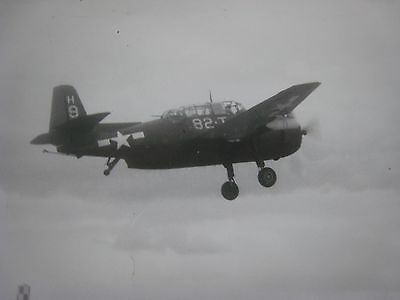 Original Ww2 Photo...10X8 In.  ' Dive Bomber '